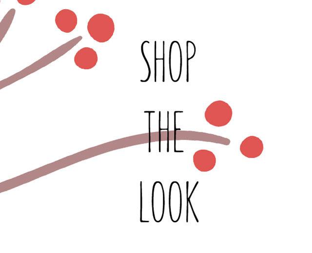 shop-the-look-xmas-2017